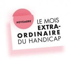 logo du mois extraordinaire 2013