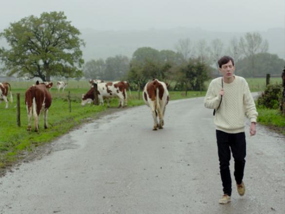 Photo : Carl sur une route mouillée de campagne, un troupeau de vaches derrière lui
